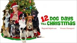 12 Dog Days Poster