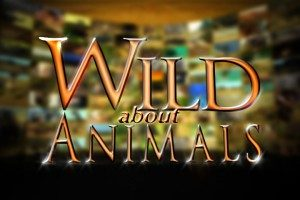 Wild About Animals Logo